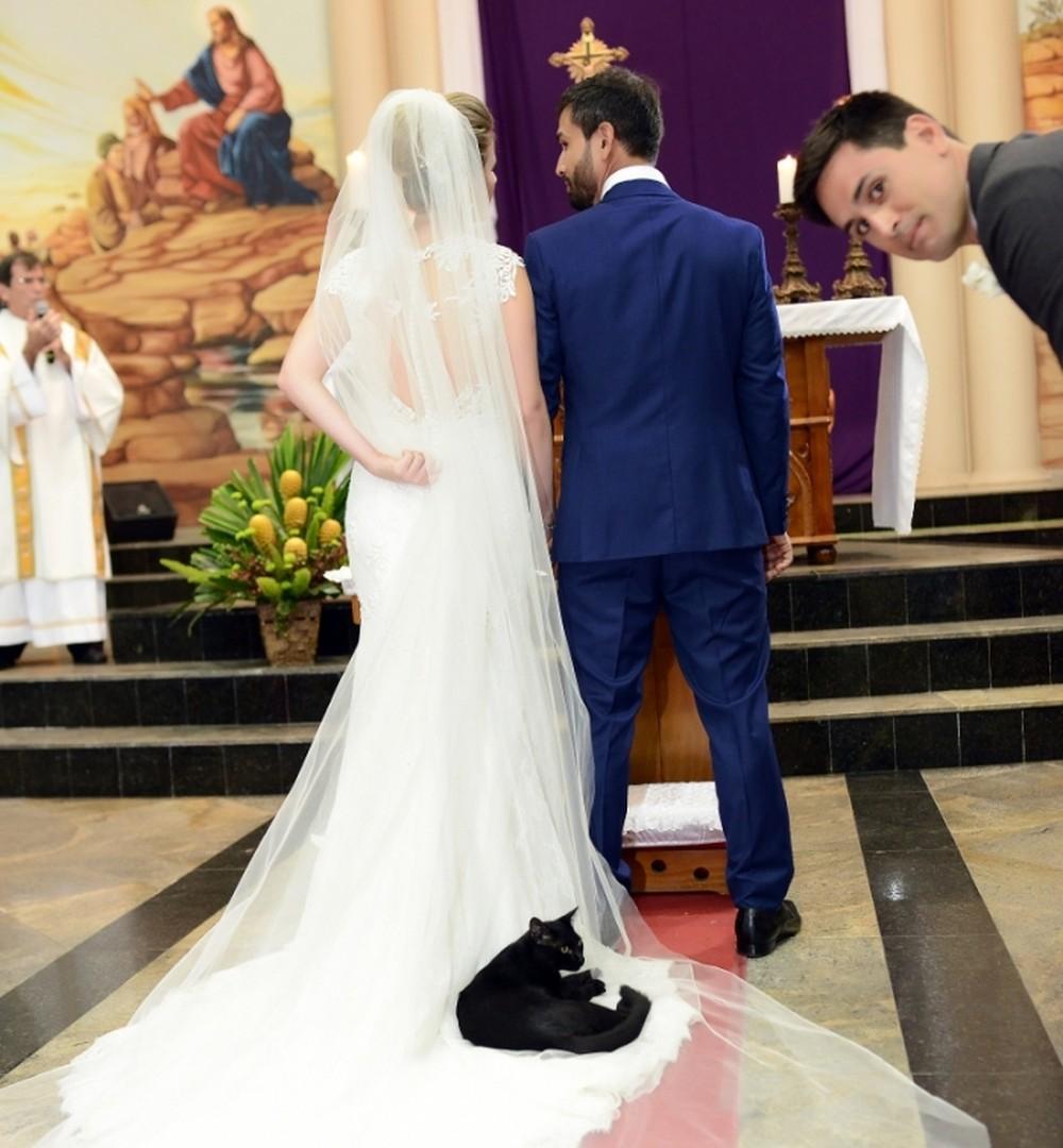 Gato deita no véu da noiva durante casamento e rouba a cena noES
