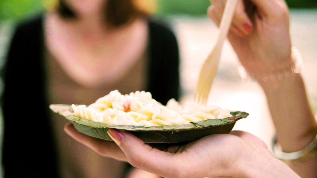 Alemães desenvolvem prato biodegradável com folhas deárvore