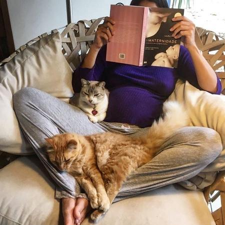 Atriz Carol Castro dá exemplo sobre ter gatos nagestação