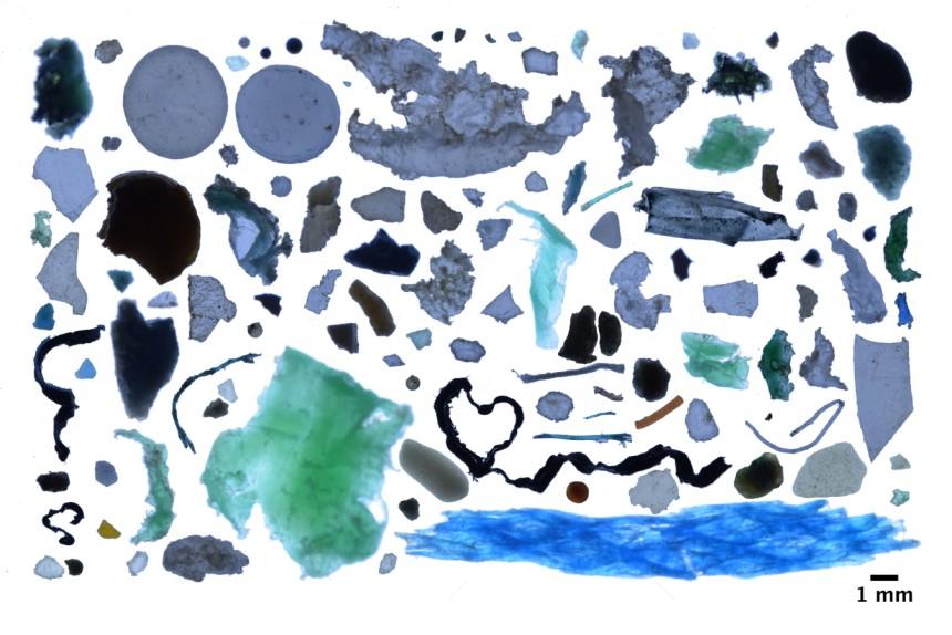 Há 300 mil milhões de peças de plástico a poluir as águas do Ártico, revelaestudo