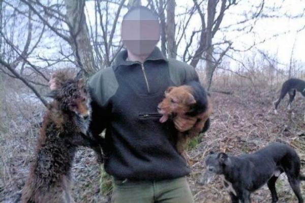 Peturbador: Caçadores exploram cães para torturar e matar animaisselvagens