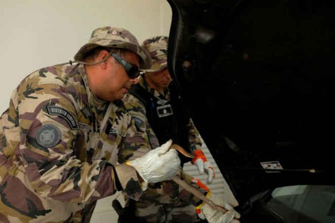 Polícia Militar Ambiental tem novo contato para resgate de animais em Brasília,DF