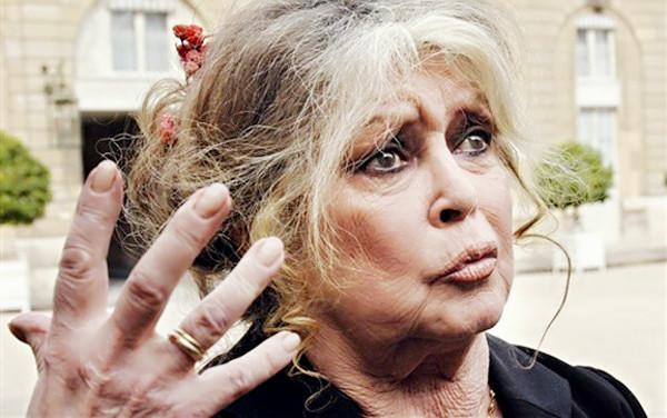 Brigitte Bardot pede boicote a candidato à presidência da França que apoia acaça