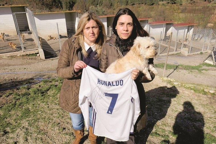 Camisa autografada e doada pelo jogador Cristiano Ronaldo ajuda dezenas deanimais