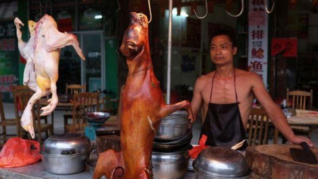Em meio a polêmica, China inaugura festival de carne decachorro