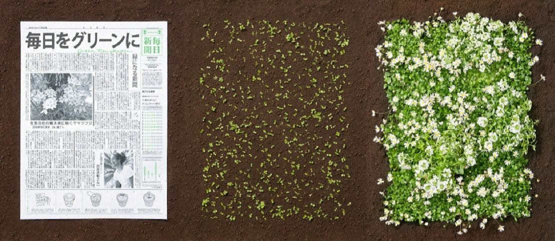 Green-newspaper-ciclovivo4