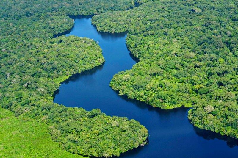 """Barragens na bacia do Amazonas poderão causar danos """"profundos"""" na natureza, dizestudo"""