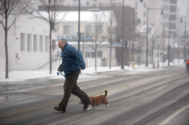 Idosos que passeiam com cães de estimação são mais saudáveis, indicaestudo