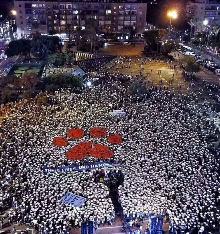 Trinta mil ativistas marcham nas ruas de Tel Aviv pelos direitosanimais